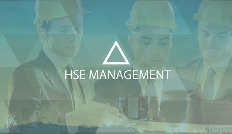 Qepler | summits & conferences | HSE Management Summit, Berlin, 13 June 2019